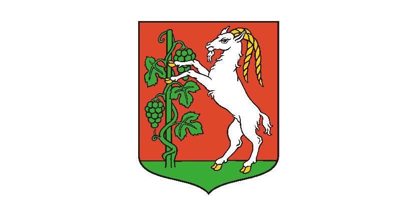Gmina Lublin